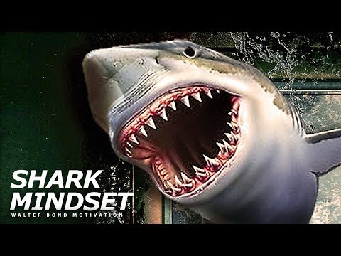 SHARK MINDSET One of the Best Speeches Ever by Walter Bond